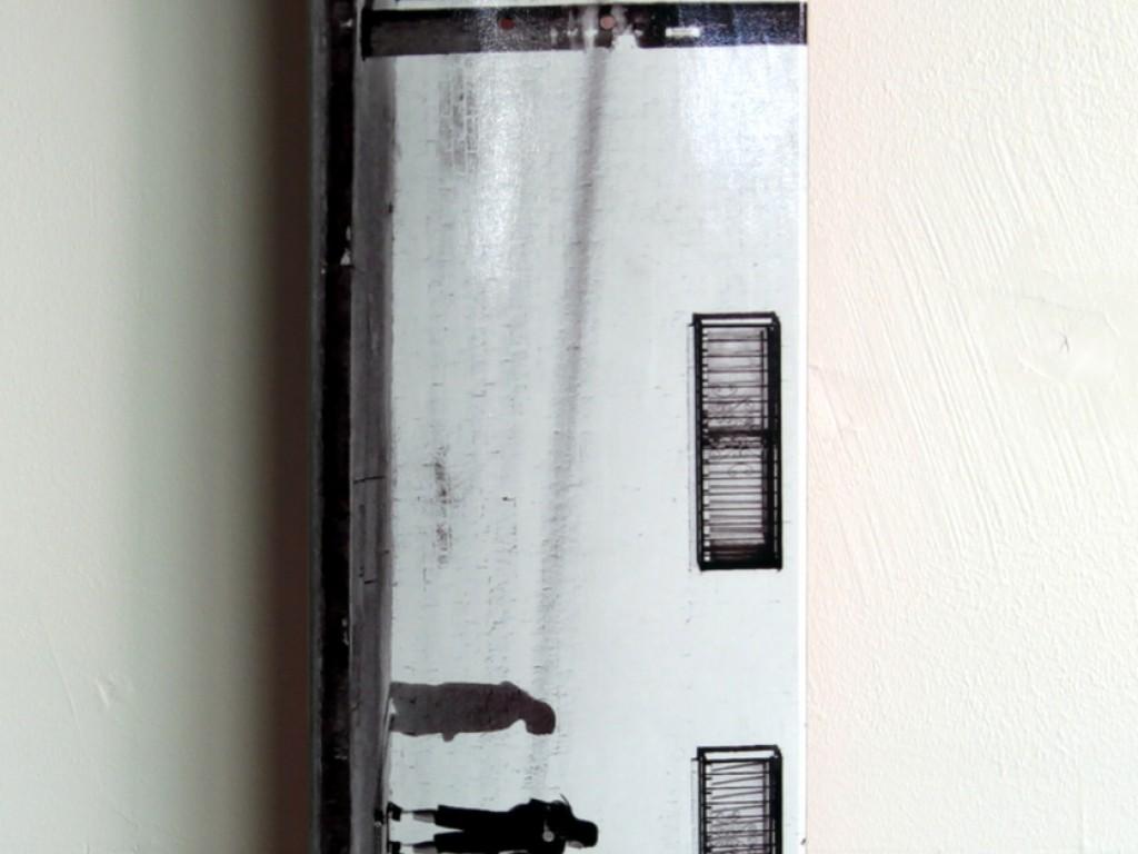RAFA – Photograph Skate Deck – 3